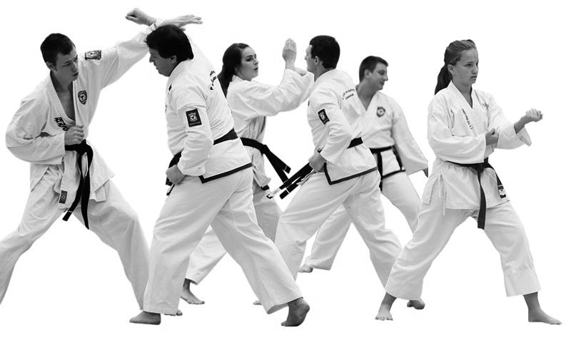 Brisbane Taekwondo