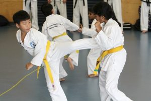 Why kids martial arts training is so important