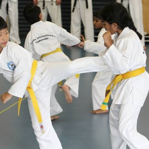 Why kid's martial arts training is so important