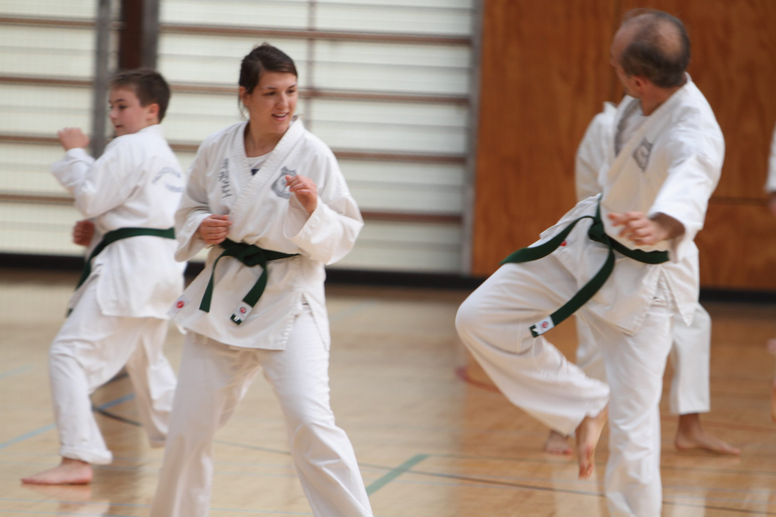 Beginner martial art classes for adults