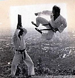 first taekwondo demonstrations in 1978