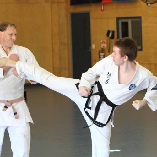 Can you use Taekwondo in a fight?