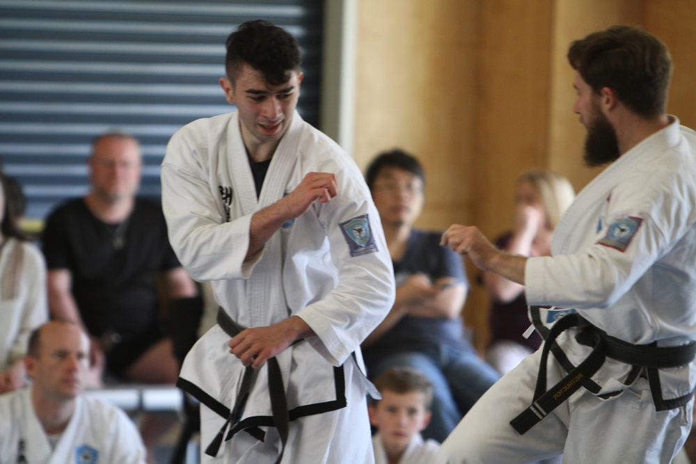 taekwondo brisbane stance