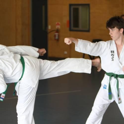 Beginner Taekwondo Class for Teens