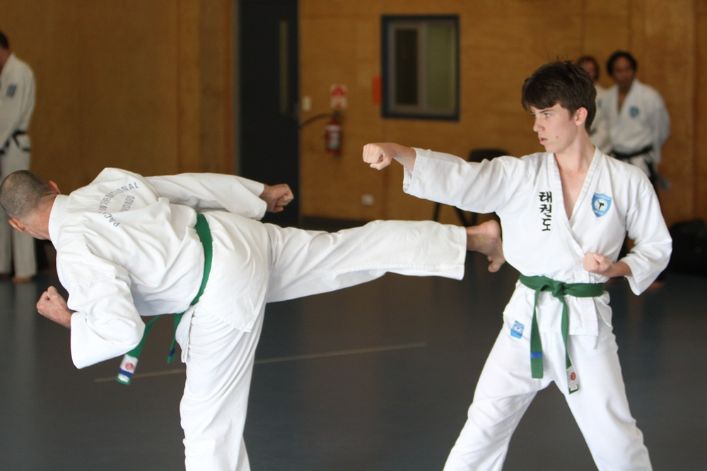 Beginner Taekwondo class for teens
