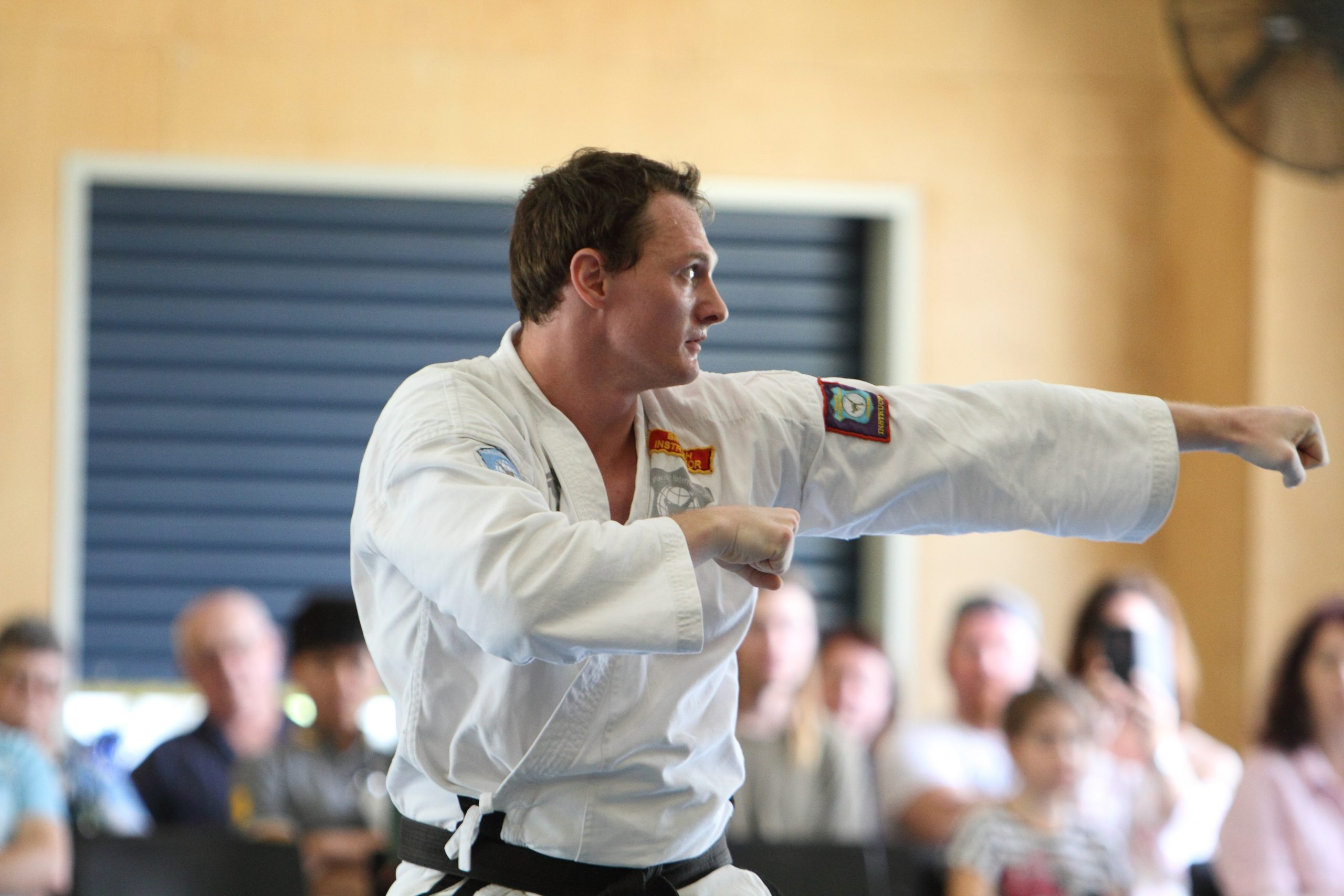 adult Taekwondo classes