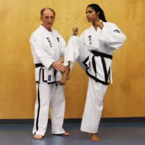 Technical Vocabulary of WTF-Style Taekwondo