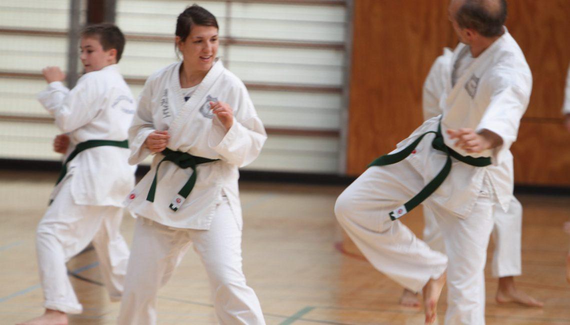 Beginner martial art classes for adults